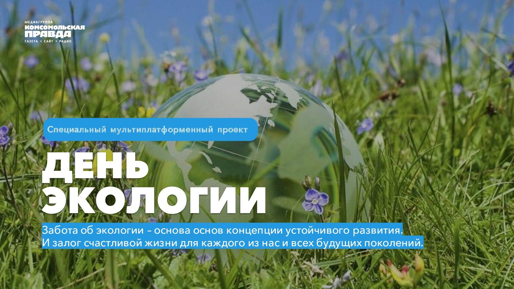 День экологии 2021